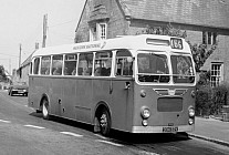 334EDV Western National