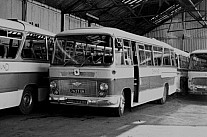 7627UK Alexander Greyhound,Arbroath Don Everall,Wolverhampton