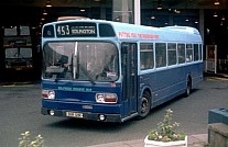 SGR121R Wilfreda Beehive,Doncaster United AS