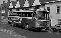 229LRB (VGV445X) Norfolks,Nayland