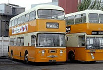AXS428C Graham,Paisley