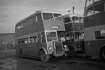 BCK416 Paton,Renfrew Ribble MS