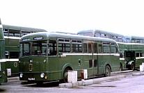 PLG967 SHMD