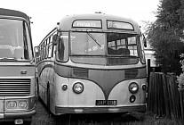 JAP698 Audawn,Corringham Harrington Demonstartor