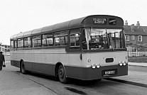 JGV332N Squirrells,Hitcham