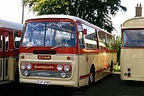 EUF218D Dack,Terrington St.Clements Sothdown MS
