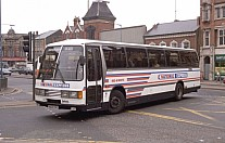 A231VWO Red & White National Welsh