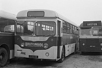 YYB118 Brutonian(Knubley),Bruton H&C,South Petherton