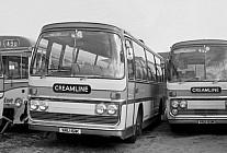 YRU161K Creamline,Tonmawr Shamrock & Rambler