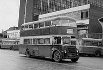 556DUA Stonier,Goldenhill Wallace Arnold(Kippax & District),Leeds