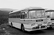 140DBO Creamline,Tonmawr Black & White Western Welsh