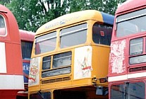 ALM58B Kelvin Scottish London Transport