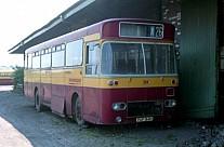 PUF164H Richardson,Sheffield Southdown MS