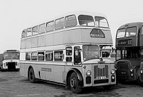 OCS111 Lewingtons,Cranham Western SMT