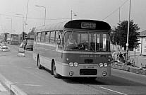 SYO602N Golden Miller,Feltham