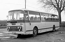 EUF218D Dack Terrington St.Clement Southdown MS