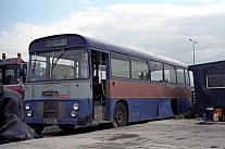 GWP271J Gwalia,Aberconwy Everton,Droitwich