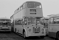 LFS423 D Coaches,Morriston Edinburgh CT
