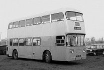 SGD601 Lewingtons,Cranham GGPTE Glasgow CT