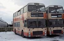 D315LNB GM Buses