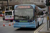 MJ53BLU Bluebird (Dunstan),Middleton