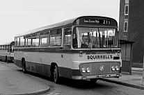 NBJ462P Squirrells,Hitcham