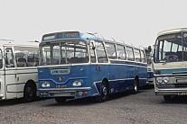 439GYR Alpine,Chadwell Heath Grey Green,.N15