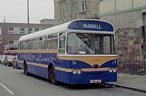 288AUF Marbill,Beith Southdown MS
