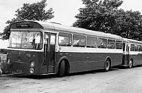 UCK522 Phillips,Shiptonthorpe Ribble MS