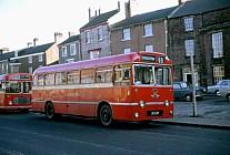 56DUP United AS Wilkinson,Sedgefield