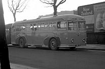 JNR298 Brown,Sapcote