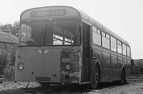 771NJO Brutonian(Knubley),Bruton COMS