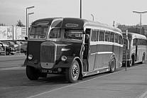 CGV70 Norfolks Nayland