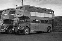 AMS190 W.Alexander,Falkirk