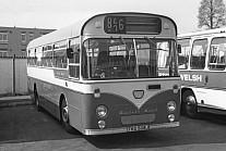 TKG508J Western Welsh