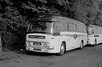 8221AD Black & White,Cheltenham